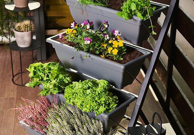 Grow Vertical Garden Planter